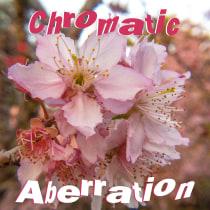 Chromatic Aberration.. A Photograph, Digital photograph, and Photographic Composition project by Vinicius Pacheco - 01.16.2021