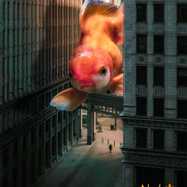 Mi Proyecto del curso: Fotomontaje en Photoshop: crea mundos futuristas. A Post-production, Photo retouching, Digital photograph, Photographic Composition, and Photomontage project by David vinueza - 05.04.2021