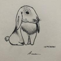 Meu projeto do curso: Ilustração de animais: represente a vida selvagem no sketchbook. Un projet de Illustration, Collage, Carnet de croquis et Illustration naturaliste de Ana Paula Bisson Bensi - 10.09.2021