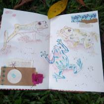 Mi Proyecto del curso: Ilustración de animales: dibuja la vida salvaje en tu sketchbook. Un projet de Illustration, Collage, Carnet de croquis et Illustration naturaliste de Ana Karina Moreno - 20.09.2021