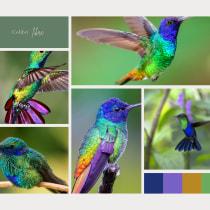 Diseño efímero . A Mode und Modedesign project by Franchesca Medina Diaz - 13.09.2021