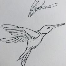 My project in Daily Sketching for Creative Inspiration course. Um projeto de Ilustração, Esboçado, Criatividade, Desenho e Sketchbook de Juan Carlos Uscátegui Mejía - 24.09.2021