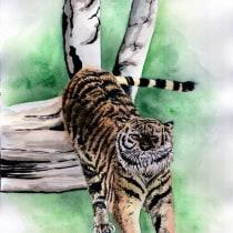 Mon projet du cours : Illustration scientifique d'animaux à l'aquarelle. Um projeto de Ilustração, Pintura em aquarela, Desenho realista e Ilustração naturalista de Claire Chartier - 05.10.2021