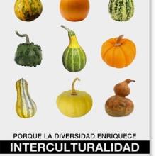 Campaña por la diversidad. Un proyecto de Diseño y Fotografía de Marta Sisón Barrero - 01.01.2009