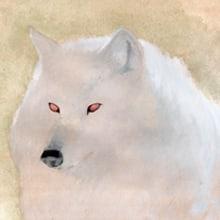 Álbum ilustrado de los tres cerditos. Un proyecto de Ilustración de Jose Martínez Calderón - 25.06.2012