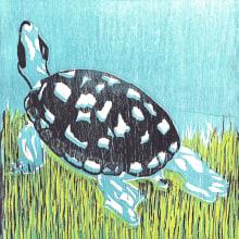 Grabado en madera. TORTUGA. Um projeto de Ilustração de Marta Vivanco Otero - 01.11.2012