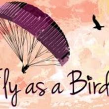 Fly like a Bird. Un proyecto de Diseño e Informática de Joel Astete - 21.03.2013