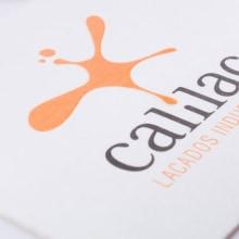 identidad calilac. Un proyecto de Diseño, Publicidad y Desarrollo de software de Chary Esteve Vargas - 24.03.2013