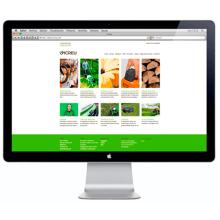 vicreu.net. Un proyecto de Diseño Web de Bisgràfic - 09.06.2014