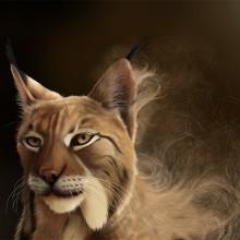 Lynx Pardinus. Un progetto di Illustrazione, Belle arti , e Pittura di Jaime Sanjuan Ocabo - 09.09.2014