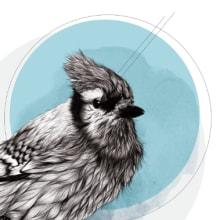 Furry Bird//. Un proyecto de Ilustración de Lucía Paniagua - 30.09.2014