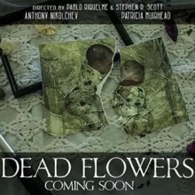 Dead Flowers. Um projeto de Música e Áudio de Adrià Sempere Azorin - 07.11.2014
