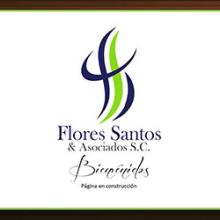 Flores Santos & Asociados. Un proyecto de Diseño Web de Violeta Farías - 12.05.2012