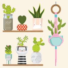 GROW ME NICE. Un proyecto de Diseño de personajes e Ilustración de Natalia Escaño - 12.03.2015