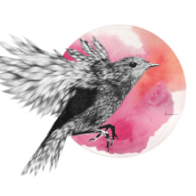 Furry Bird II. Un proyecto de Ilustración de Lucía Paniagua - 15.03.2015