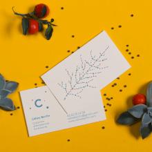 Celine Bertin - Créatrice d'Ambiances Extèrieures . Um projeto de Br, ing e Identidade, Design gráfico e Paisagismo de Ludivine Dallongeville - 31.01.2014