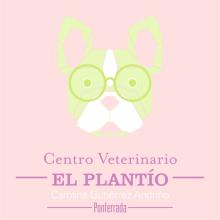 El Plantío. Un proyecto de Diseño, Ilustración, Br, ing e Identidad y Diseño gráfico de Alejandro Mazuelas Kamiruaga - 12.07.2015