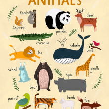 Aphabet, Animals and Numbers / Carteles para Hansol Education. A Graphic Design & Illustration project by ana seixas - 04.14.2015