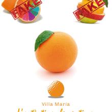 Clementina Villa Maria. Un proyecto de Dirección de arte, Diseño y Publicidad de Carlos Rivas Fernández - 29.02.2012