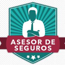 Infografía Asesor de Seguros. Un proyecto de Diseño, Br, ing e Identidad, Diseño gráfico y Diseño de la información de Alejandra Marín Garibay - 14.10.2014