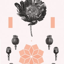Sabia. A Graphic Design & Illustration project by Dani Cambeiro - 10.12.2016