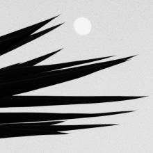 Nuestro Proyecto del curso: Las leyes de la percepción visual: unidad, peso, equilibrio y movimiento. A Photograph project by JAYO IMAGE - 01.11.2017