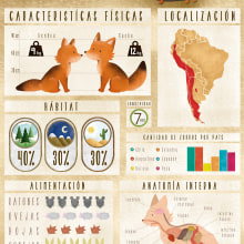 Infografía Zorro Culpeo. A Illustration, Graphic Design & Infographics project by Vale Wilson - 07.08.2015