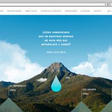 Web corporativa para Liquats Vegetals. . Un proyecto de Desarrollo Web de rseoaneb - 14.11.2016