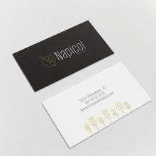 Restaurante Napicol. A Design, Br, ing, Identit, Graphic Design, and Web Design project by Toni Gómez Alfonso - 10.10.2016