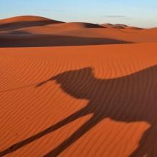 Marruecos. Un proyecto de Fotografía de Darío Zárate - 22.03.2017