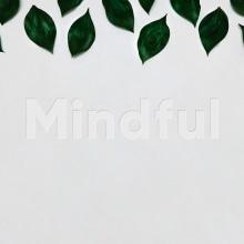 Mindful. Um projeto de UI / UX, Direção de arte, Br, ing e Identidade, Design gráfico, Web design e Desenvolvimento Web de Jesús Román Ortega - 18.12.2017