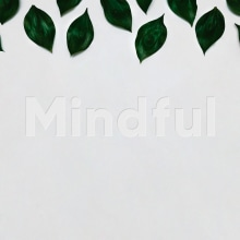 Mindful. A UI / UX, Art Direction, Br, ing, Identit, Graphic Design, Web Design, and Web Development project by Jesús Román Ortega - 12.18.2017