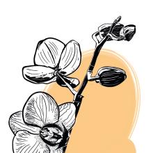 Ilustración Vectorial. Un projet de Illustration vectorielle de Victor Casillas Garcia - 09.01.2018