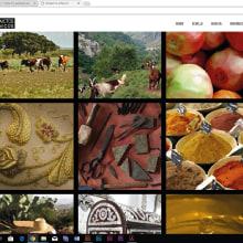 Diseño gráfico, maquetación y otros. Un proyecto de Diseño editorial, Diseño gráfico, Diseño Web y Retoque fotográfico de M.Nieves Jiménez - 16.05.2016