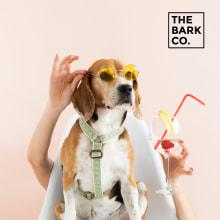 The Bark Co.. Un proyecto de Br, ing e Identidad, Marketing y Desarrollo Web de Rafael Romero - 25.05.2018