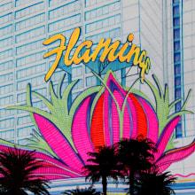 GR_Flamingo. Un proyecto de Ilustración y Dibujo de Alfonso Girón Pérez - 01.07.2018