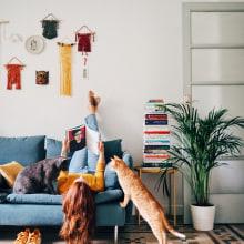 Nuestro rincón favorito IKEA. Un progetto di Fotografia di Héctor Merienda - 23.04.2018
