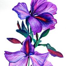 Mi Proyecto del curso: Ilustración botánica  Flor Orquidea. Un proyecto de Dibujo de Lucia AJ - 24.08.2018