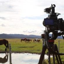 The Mythic Guide To Iceland. Um projeto de Consultoria criativa, Cinema e Criatividade de Virginia Fuentes - 01.11.2017