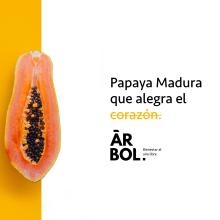 Árbol - Food design branding. A Br, ing & Identit project by Paola Ramirez - 05.06.2018