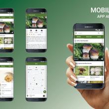 App Android. Un proyecto de Diseño y UI / UX de Olga Fernández García - 13.10.2018