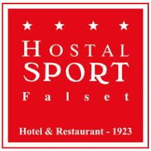Hostal Sport (Consultoría SEO - Marketing online). Un projet de Réseaux Sociaux , et Marketing digital de David Díaz Martín - 01.06.2013