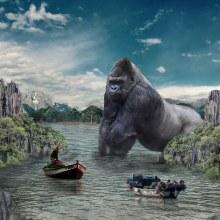 Welcome to the Jungle. Un proyecto de Fotografía, Diseño gráfico, Retoque fotográfico y Animación 2D de Juan Pablo Cardenas - 21.12.2018