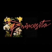 Princesita Main Titles. Un proyecto de Motion Graphics, Animación, Diseño de títulos de crédito, Tipografía, Caligrafía, Animación 2D, Stor y telling de Smog - 20.11.2018