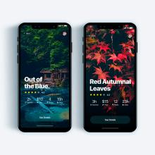 UI Design Collection 3. Um projeto de UI / UX, Design interativo e Web design de Christian Vizcarra - 28.02.2019