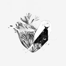 Casi todo lo que tienes que saber (tú). Un proyecto de Ilustración y Diseño editorial de Héctor San Andrés Jaime - 03.05.2019