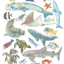Animales de Galápagos, Inktober 2018. A Illustration, Collage, Drawing, and Watercolor Painting project by Estefania Santos Gallegos - 06.10.2019