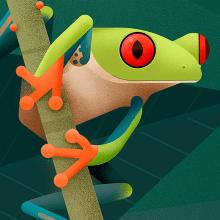 Hylidae. Colección de ilustraciones de ranas arborícolas.. Un projet de Illustration et Illustration numérique de David Comerón - 01.08.2019