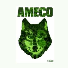 AMECO LOGO / DISEÑO CAMISETAS. Un proyecto de Ilustración de Antonio de Haro Garzón - 19.09.2019