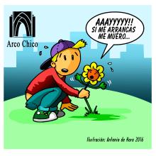 ARCO CHICO / ILUSTRACIÓN FLORES / ANDÚJAR. Un proyecto de Ilustración de Antonio de Haro Garzón - 09.03.2016